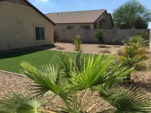 Backyard, Synthetic Grass, Cottonwood Ranch, Arizona Scenery, Desert Landscape
