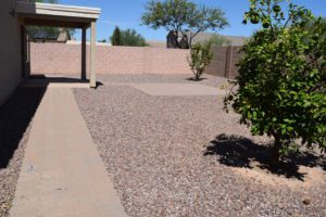 Backyard Desert Landscape, Extended Pavers, Fruit Trees